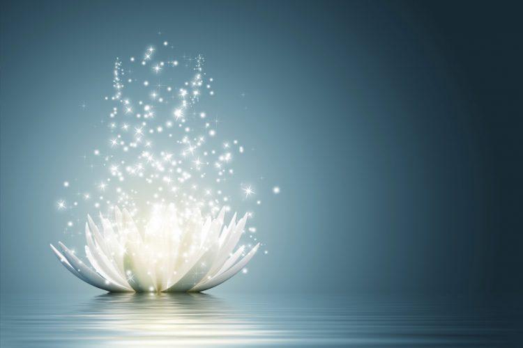 sila-flower
